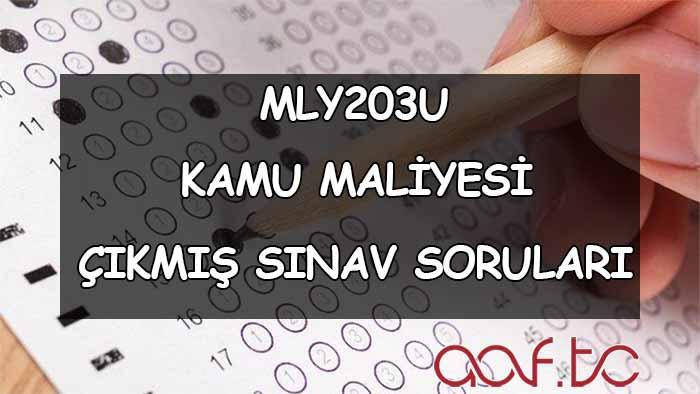 MLY203U Kamu Maliyesi Çıkmış Sınav Soruları