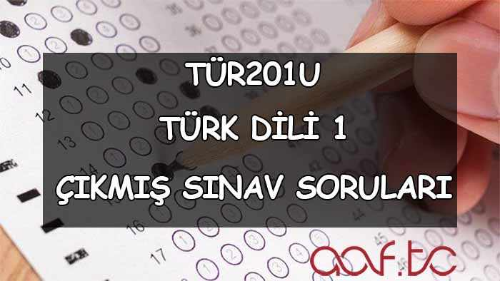 Türk Dili 1 Çıkmış Sınav Soruları